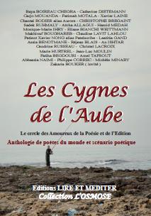 LES_CYGNES_DE_L'AUBE
